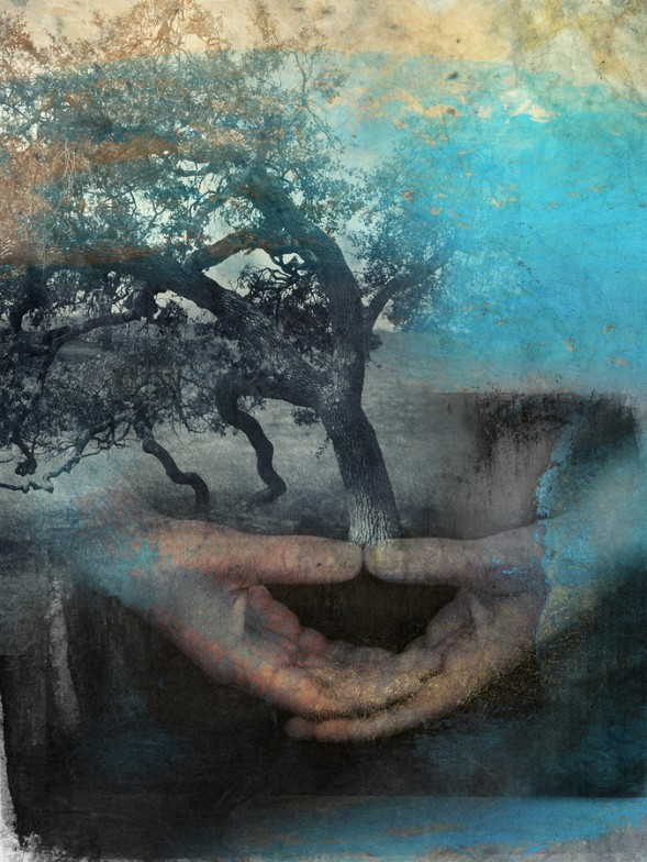 Abstract digital illustration of hands holding a tree